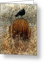 Crow On Old Wooden Grave Greeting Card