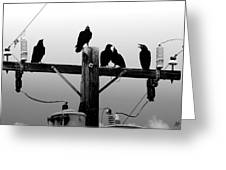Crows And Insulators On Route 66 Greeting Card