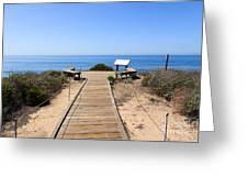 Crystal Cove State Park Ocean Overlook Greeting Card