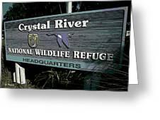 Crystal River Greeting Card