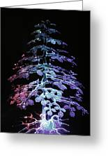 Crystal Tree In Color Greeting Card