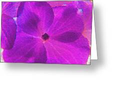 Crystelized Hydrangea Bloom Art Greeting Card