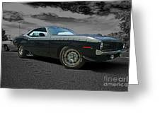 Cuda Rra Greeting Card