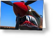 Curtiss P-40n-5 Kittyhawk Greeting Card