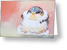 Cute Baby Birdy Greeting Card