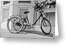 Cycle Greeting Card