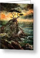 Cypress Tree In Storm Greeting Card