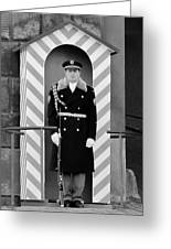 Czech Soldier On Guard At Prague Castle Greeting Card by Christine Till