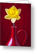 Daffodil In Red Pitcher Greeting Card