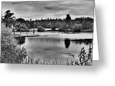 D'agostini Lake Greeting Card