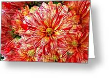Dahlia Illusion Greeting Card