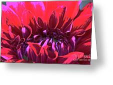Dahlia Over Exposed Greeting Card