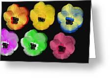 Daisies II Greeting Card