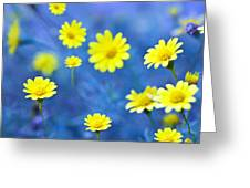 Daisies On Blue Greeting Card by Al Hurley