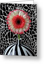 Daisy And Graphic Vase Greeting Card