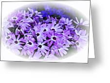 Daisy Garden Vignette Greeting Card