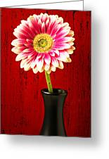 Daisy In Black Vase Greeting Card