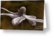 Dancing In The Breeze Greeting Card