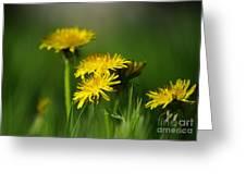 Dandelion Magic Greeting Card