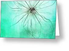 Dar La Luz Greeting Card by Priska Wettstein