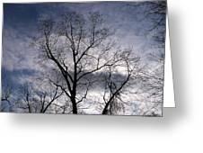 Dark And Stromy Night Trees Greeting Card