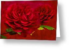 Dark Pink Rose Greeting Card