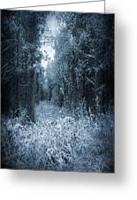 Dark Place Greeting Card by Svetlana Sewell