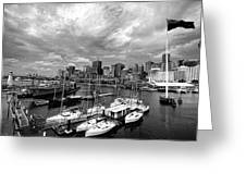 Darling Harbor- Black And White Greeting Card