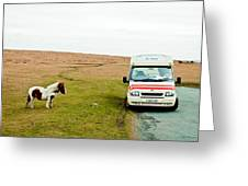 Dartmoor Pony Fancies An Ice Cream Greeting Card