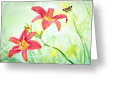 Day Lily Delight Greeting Card by Bonnie Barry