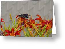 Daylily Butterfly Greeting Card