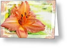 Daylily Greeting Dard Blank Greeting Card