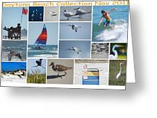 Daytona Beach Collection 2011 Greeting Card