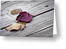 Dead Leaves Greeting Card