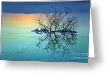 Dead Sea - Withered Bush At Dawn Greeting Card