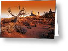 Dead Tree In Desert Monument Valley Greeting Card