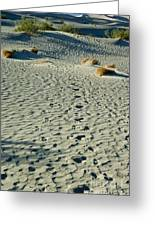 Death Valley 1 Greeting Card