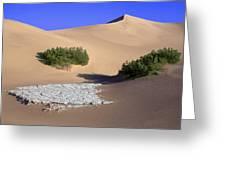 Death Valley Salt Flat Greeting Card