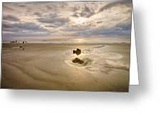 Debris On The Beach - Hunting Island Sc Greeting Card