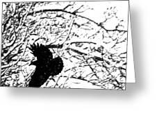 December Raven Greeting Card