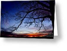 December White Oak Sunrise Greeting Card