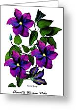 Deciduous Climber (clematis Warsaw Nike) Greeting Card