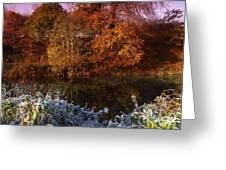 Deciduous Woods, In Autumn With Frost Greeting Card by The Irish Image Collection