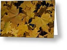 Deep Leaves Greeting Card