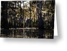 Deep Swamp Greeting Card