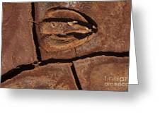 Deer Imprint In Mud Greeting Card