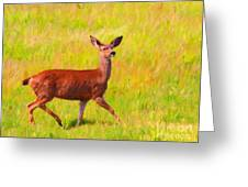 Deer In The Meadow Greeting Card by Wingsdomain Art and Photography