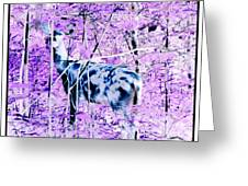 Deer In The Woods Inverted Negative Image Greeting Card