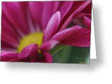 Delicacy Greeting Card