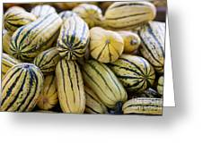 Delicata Winter Squash Greeting Card